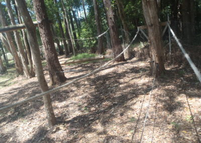 LOW ROPES_6